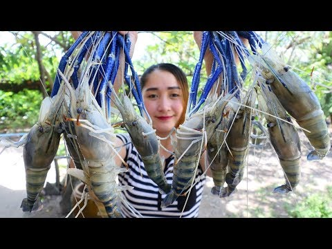Yummy River Prawn Cooking Young Green pepper – River Prawn Stir Fried Recipe – Cooking With Sros