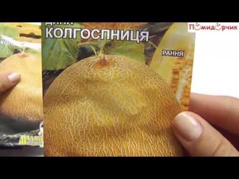 Семена дыни Тамар F1 (500 семян)