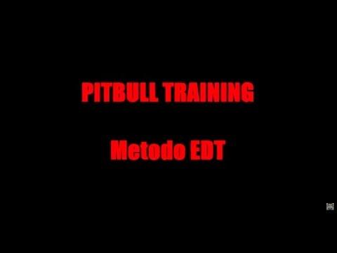 2015 - Calisthenics - PITBULL TRAINING metodo EDT