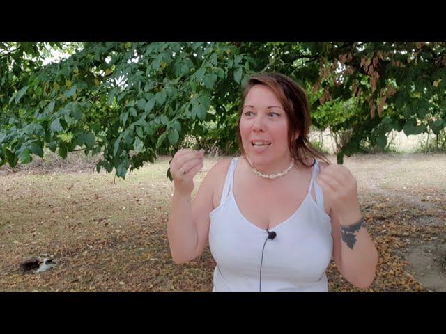 Extrémisme et élitisme alimentaire - Temple Mouvant #5