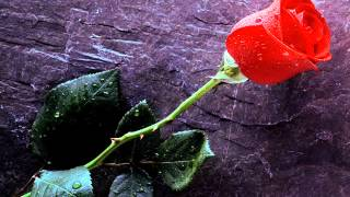 Ballade Pour Adeline (Instrumental Piano Cover)
