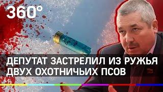 Кировский депутат застрелил собак просто так без повода