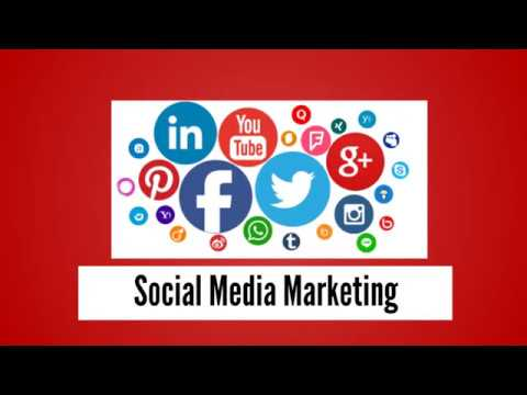 Social Media Marketing Services - Social Media Management Services | Tampa SEO Agency