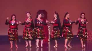 Bellydance Evolution in Oz Support Act - Phoenix Belly Dance Troupe (New Zealand)