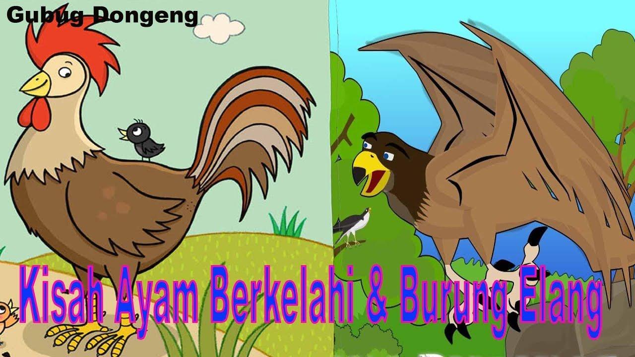 Download Dongeng Kisah Ayam Yang Berkelahi dan Burung Elang   Cerita Anak Inspiratif   Bahasa Indonesia