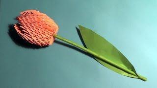 Модульное оригами тюльпан (схема сборки, пошаговая инструкция)