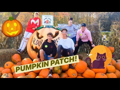 WE HAD A GREAT TIME! | ALDOR ACRES VLOG