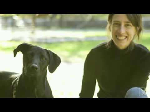 Alexandra Horowitz - Was denkt der Hund?