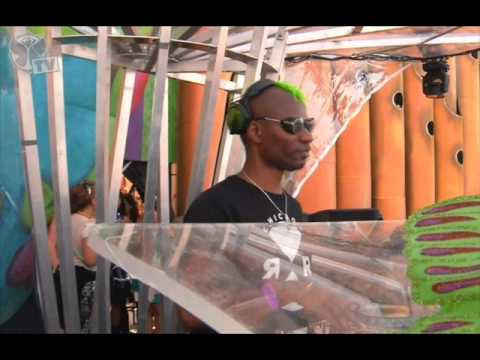 Green Velvet - Live @ Tomorrowland 2013 (Sunday) Dave Clarke Stage