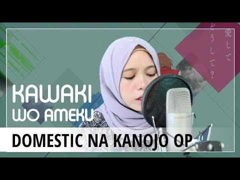 【Rainych】Kawaki wo Ameku - Domestic na Kanojo OP (cover)