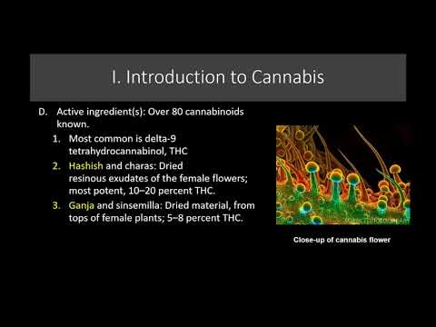 Lecture 22  Introduction the Pharmacology of Cannabis