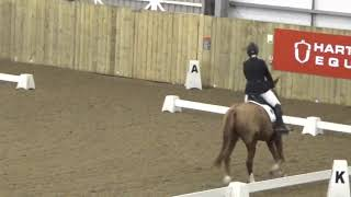 Dinah de Wit & Mercury Hartpury November 2018
