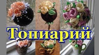 Топиарий (Topiary)