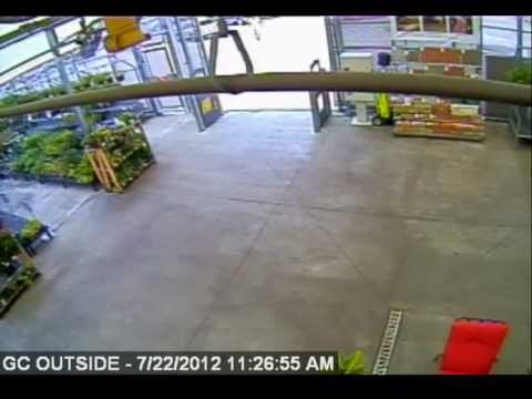 Theft From Walmart On Nelson Road Youtube