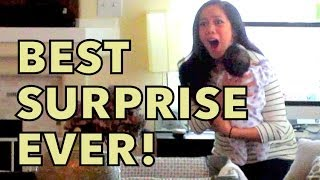 BEST SURPRISE EVER May 23 2014 itsJudysLife Daily Vlog