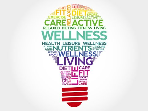 team-leaders'-guide-to-staff-wellbeing-|-dr.-david-mathew