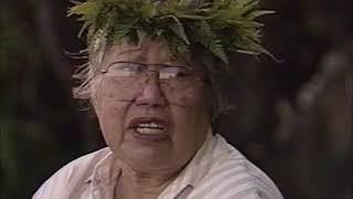 Hawaiians Part 3