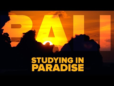 BALI: Studying in Paradise