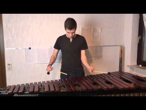 Titanium - David Guetta feat. Sia  -- Marimba Cover