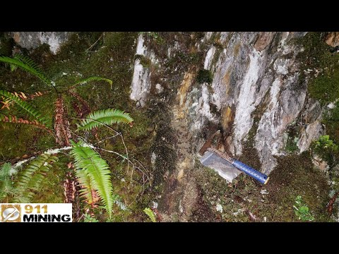 Finding Oxidized Outcrops With High Grade Au, Ag, Pt & Pd While Gold Prospecting