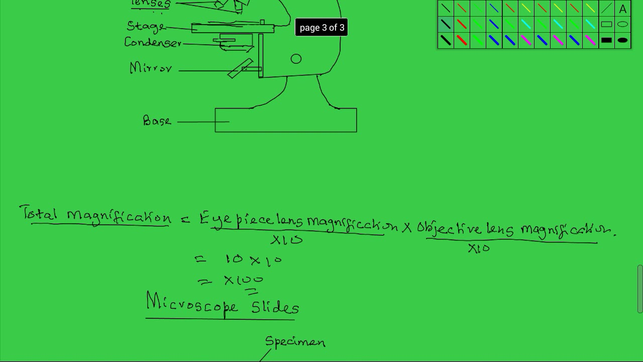 Form 1 Biology lesson 12 Structure and functions of parts ...