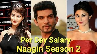Per Day Salary Of Naagin Season 2 Actors