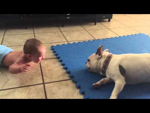Thumbnail The Best Babysitter Ever