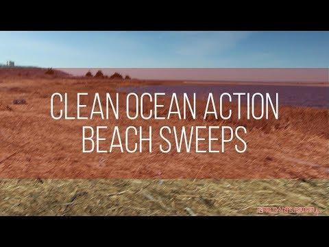 Clean Ocean Action Beach Sweeps 2018 (Sandy Hook Beach, NJ)