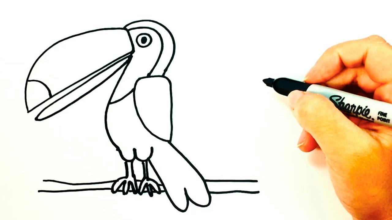 Cómo dibujar un Tucán para niños | Dibujo de Tucán paso a paso - YouTube