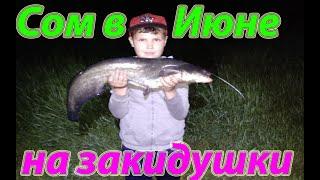 Ловля сома на закидушки Catfish