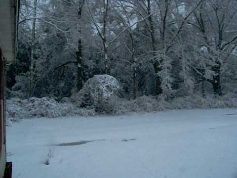 snow 2010.mov