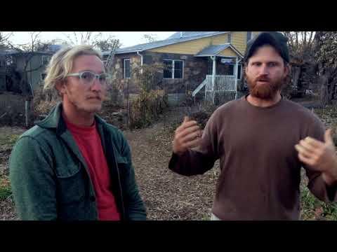 Vine and Fig / Blacks Run Forest Farm - Amazing Projects in Harrisonburg, VA
