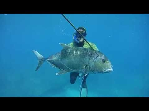 Spearfishing Western Australia - Fresh Prodhuce