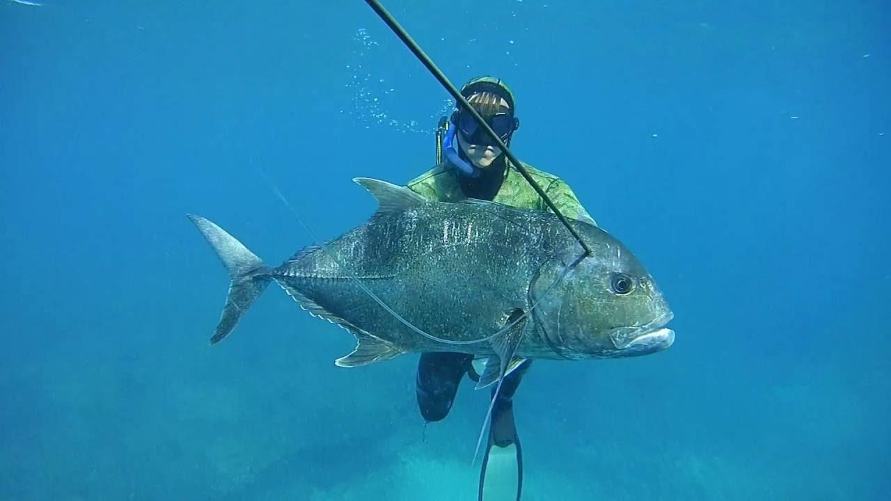Spearfishing Western Australia - Fresh Prodhuce - YouTube