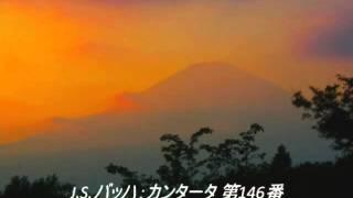 クラシック名曲 カンタータ (バッハ) 【作業用】