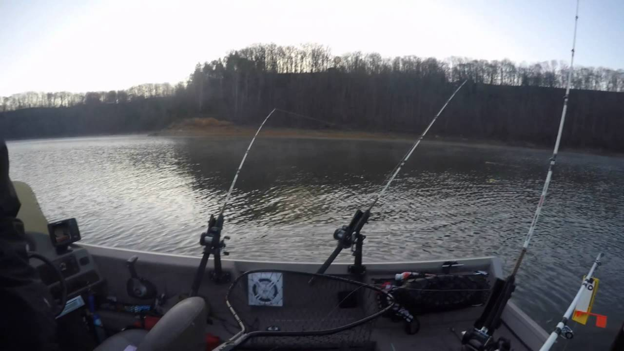 2016 spring striper fishing lake cumberland ky youtube for Striper fishing lake cumberland