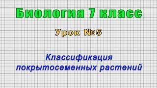 Биология 7 класс (Урок№5 - Классификация покрытосеменных растений.)