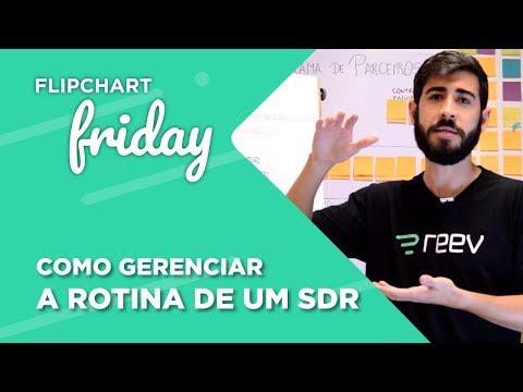 Como gerenciar a rotina de um SDR - Reev & OTB  Flipchart Friday 17