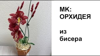 ОРХИДЕЯ ЦИМБИДИУМ из бисера. Tutorial: BEADED ORCHID | PATTERN