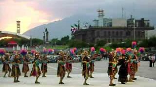 Danza de palma -  BFMNL