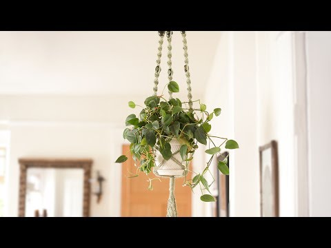 Macrame Plant Hanger Diy Craft Tutorial Youtube