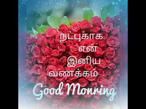 Good Morning Friends In Tamil Songs Youtube