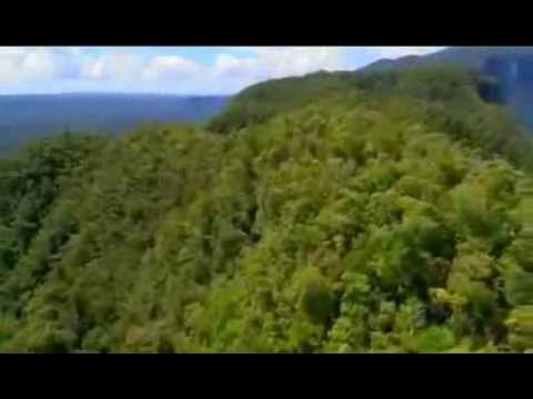 Expedition Borneo Episode #1 Documentary