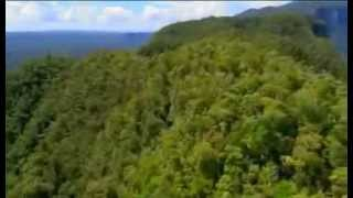 Expedition Borneo  Episode 1 Documentary)