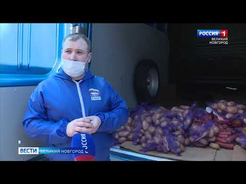 ГТРК СЛАВИЯ Волонтеры развозят овощи 31 03 20