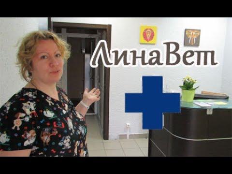 Открытие ветеринарной клиники Лина Вет.