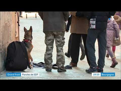Plan Grand Froid à Auxerre : l'accueil des sans-abri