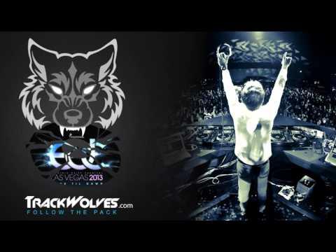 Armin Van Buuren - Live @ Electric Daisy Carnival (Vegas) - 21.06.2013