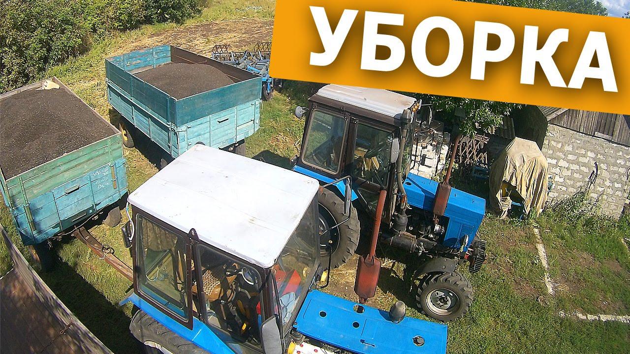 Уборка урожая подсолнечника. Комбайн Нива СК-5. часть 1.#СельхозТехника_ТВ