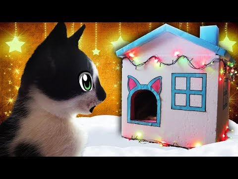 GIFT FOR NEW YEAR 2018 FOR CATS! CAT KID AND CAT Murko MOVED TO A HUGE HOUSE! life hacking DAY